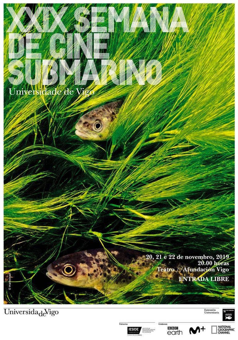 XXIX Semana Cine Sub. de Vigo